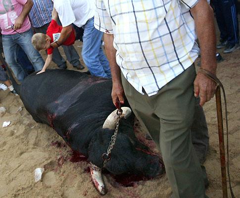 Touros de morte em Barrancos
