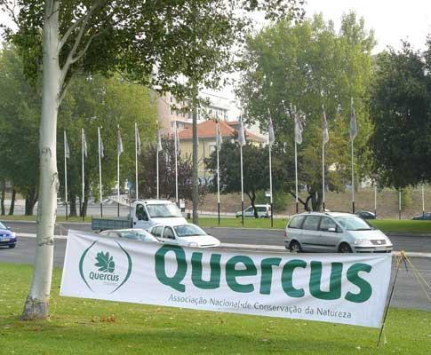 «Sinais de trânsito da Quercus», na Praça de Espanha, em Lisboa