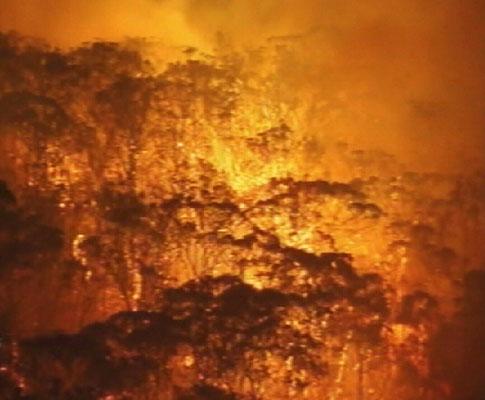 Incêndios arrasam Austrália