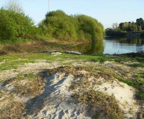 Rio Vouga: encontrado corpo de adolescente