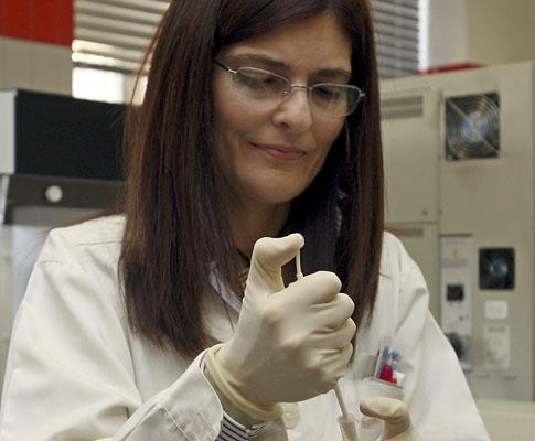 Sistema informático da base de dados de ADN