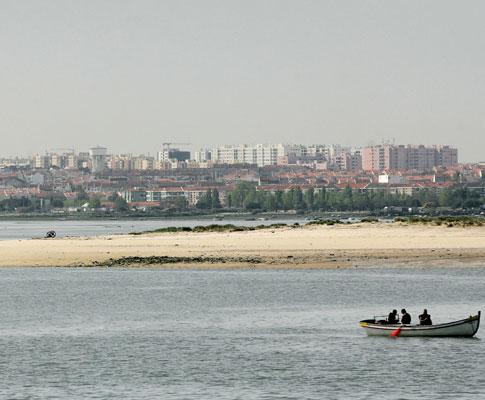 Ilha do Rato vai a leilão, por um euro, para projectos ecológicos