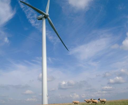 Martifer Renewables