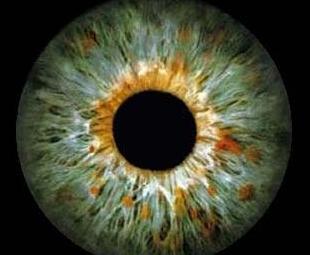 Olho (arquivo)