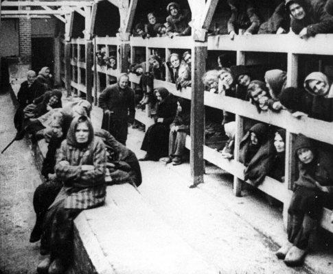 AUSCHWITZ - prisioneiros