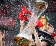 Portuguese First League: Benfica celebrates championship