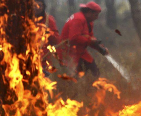 Incêndio em Pataias (LUSA)