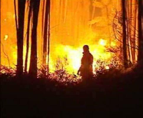 Incêndio em Albergaria