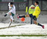Rapid Viena vs FC Porto (EPA/Helmut Fohringer)