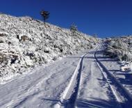 Neve em Portugal (fonte: ANTÓNIO JOSÉ/LUSA)