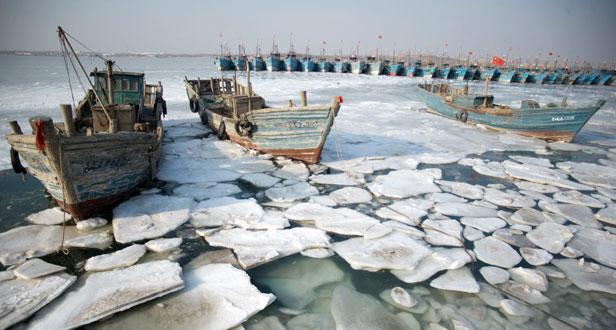 Pesca congelada