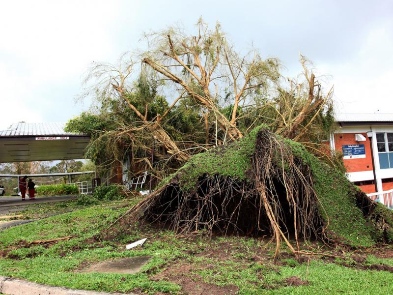 Austrália: ciclone Yasi deixa rasto de destruição (EPA/LUSA)