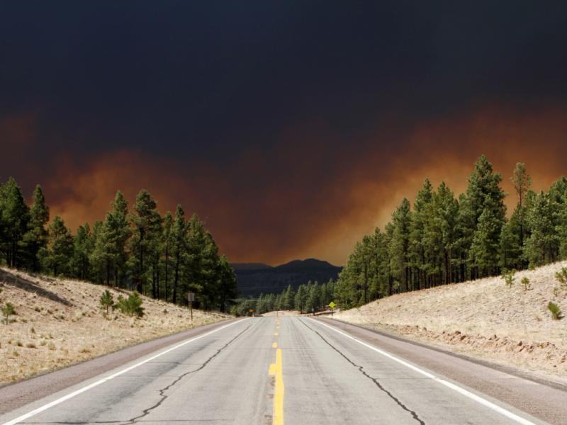 Arizona: fogo ainda não foi controlado (Joshua Lott/Reuters)