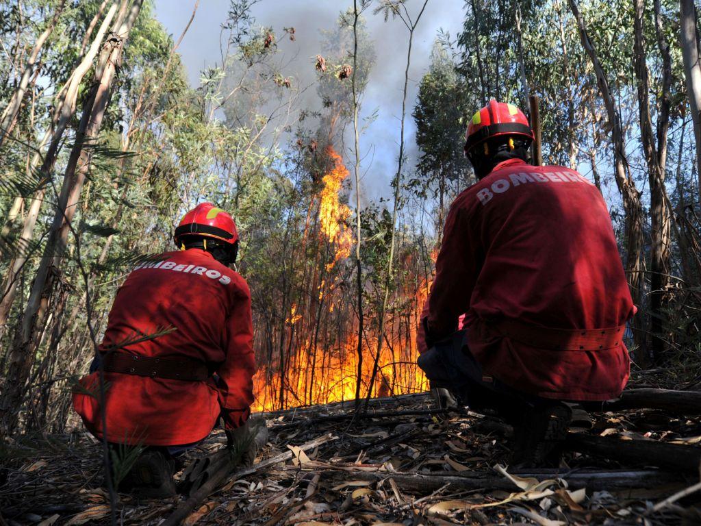Fogo em Nelas (NUNO ANDRE FERREIRA/LUSA)