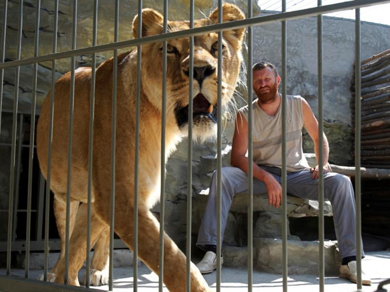 Vai viver mais de um mês com os leões [Foto: Reuters]