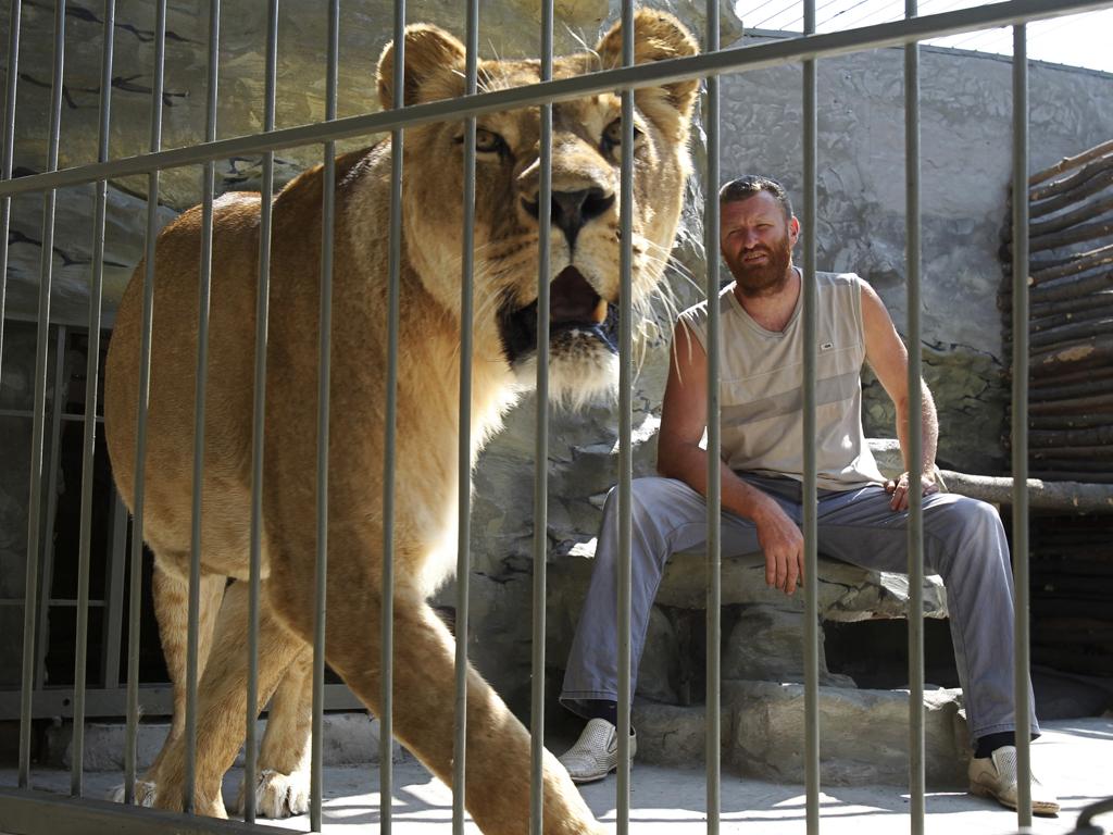 Ucraniano viveu 36 dias na jaula com uma leoa (Reuters)