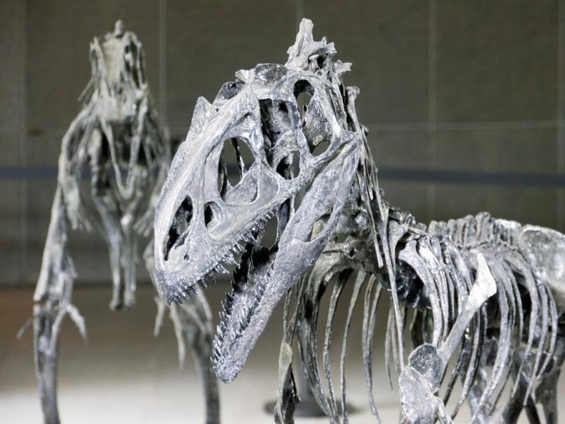 Dinossauros invadem centro comercial na China  (EPA/Adrian Bradshaw)