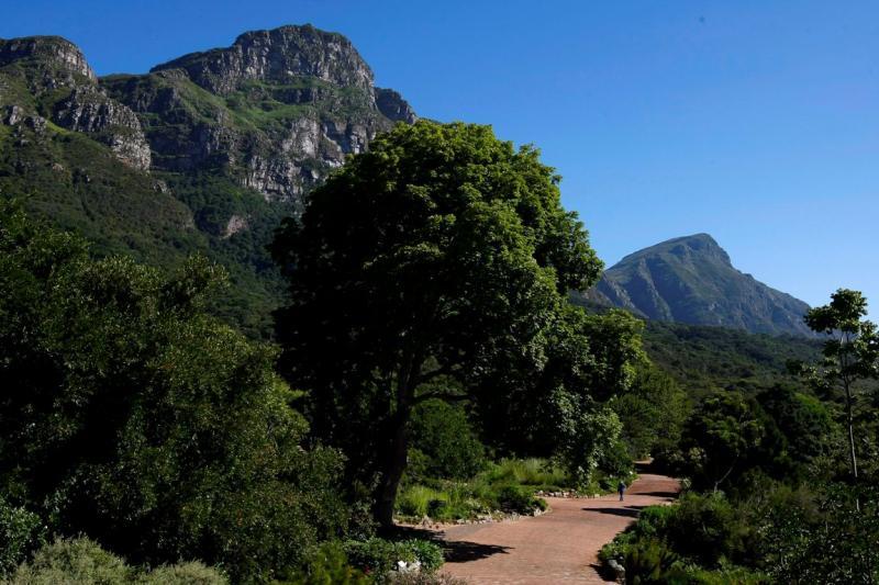 Montanha Mesa na África do Sul