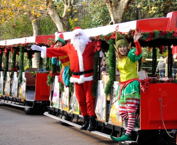 festa jardim zoologico:Fotos: Famosos assistem à chegada do Pai Natal ao Jardim Zoológico