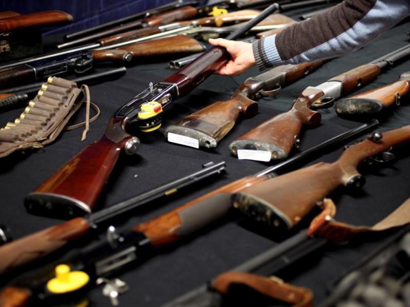 Armas apreendidas pelas autoridades [ESTELA SILVA / LUSA]