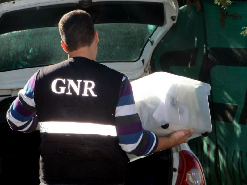 Resultado de imagem para GNR de Viseu desmantela rede de tráfico de droga