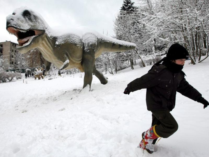 Dinossauros à solta