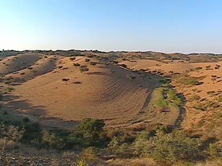 Quase todo o país em seca severa