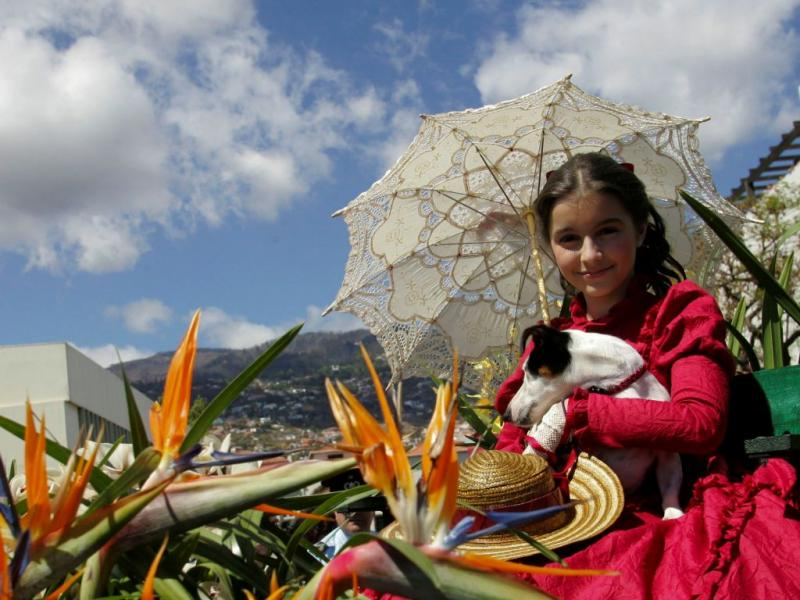 Festa da Flor na Madeira (HOMEM GOUVEIA/LUSA)