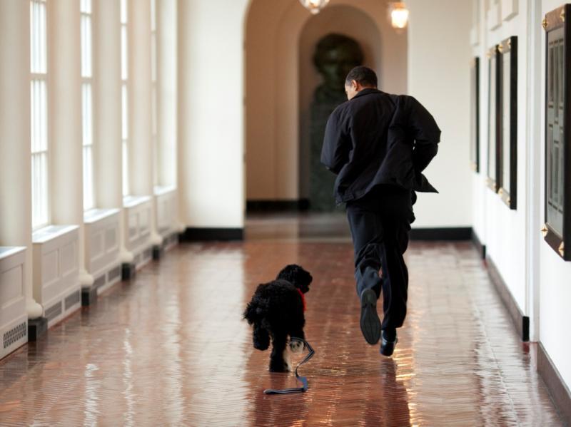 Barack Obama a fazer desporto [Foto: Reuters]