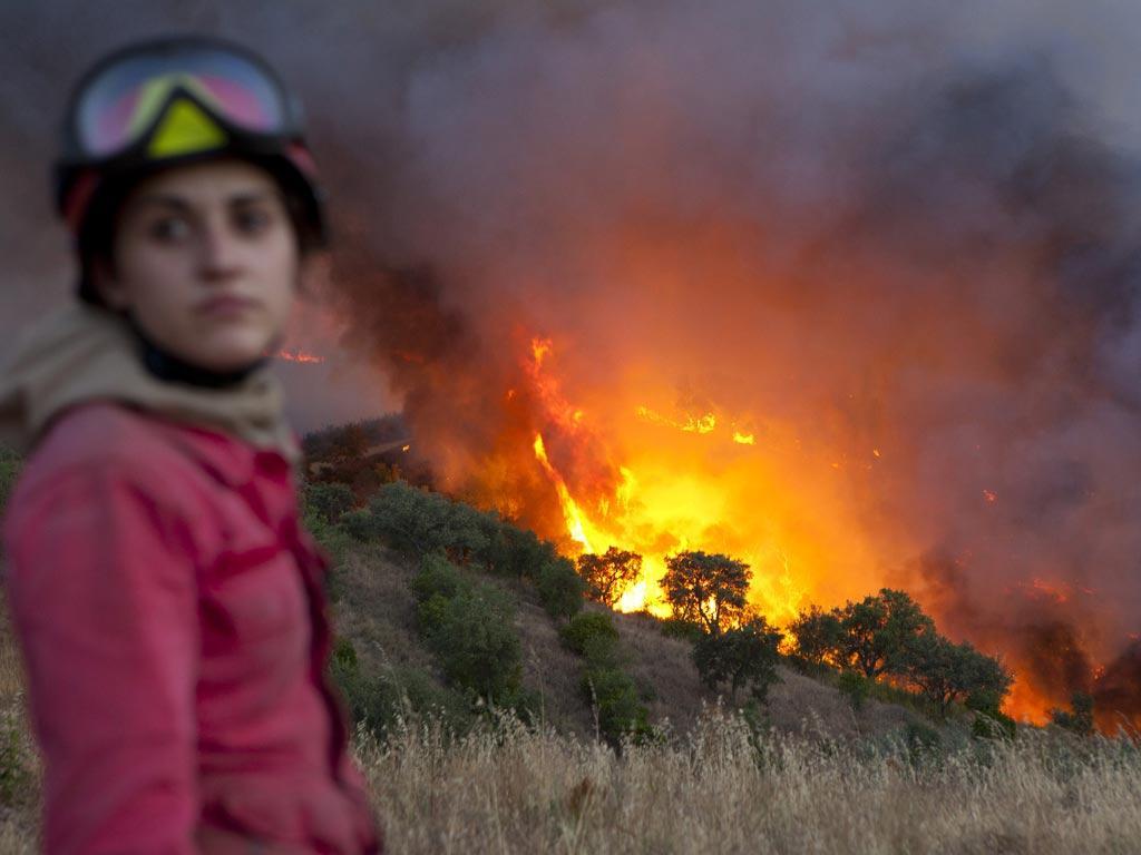 Incêndio em Tavira (lusa)