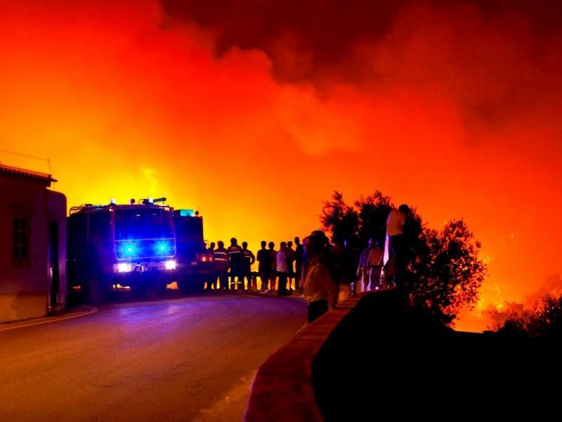 Incêndio em Cachopo, Tavira (Lusa)