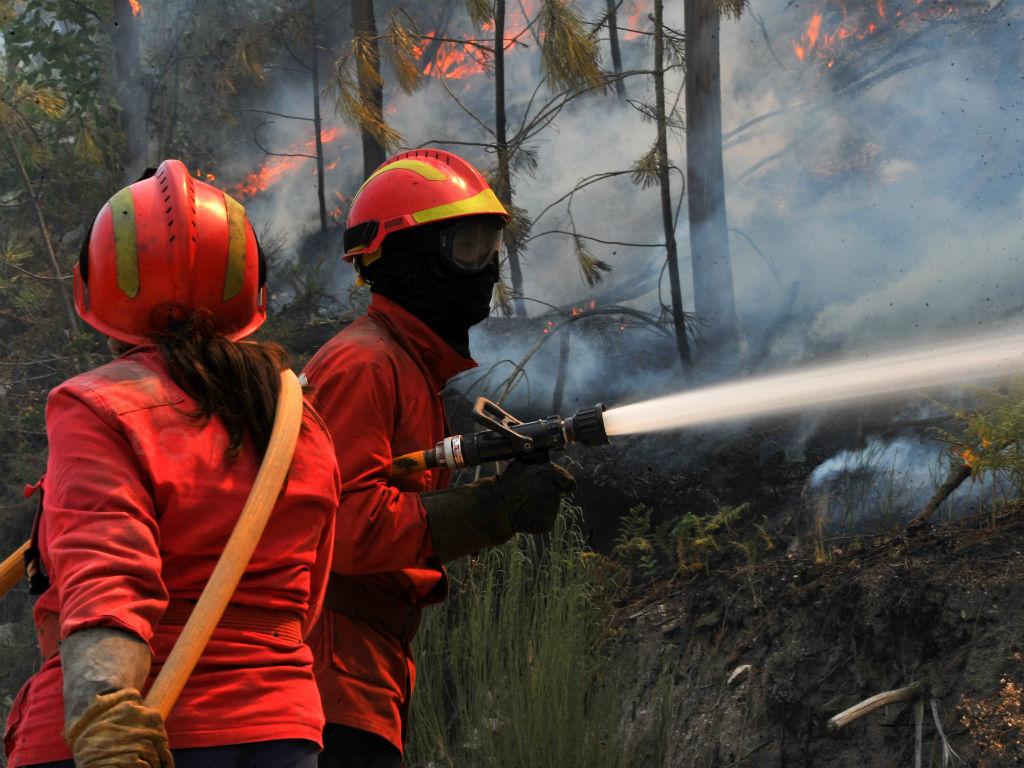 Incêndio em em Vouzelo (Nuno André Ferreira/Lusa)