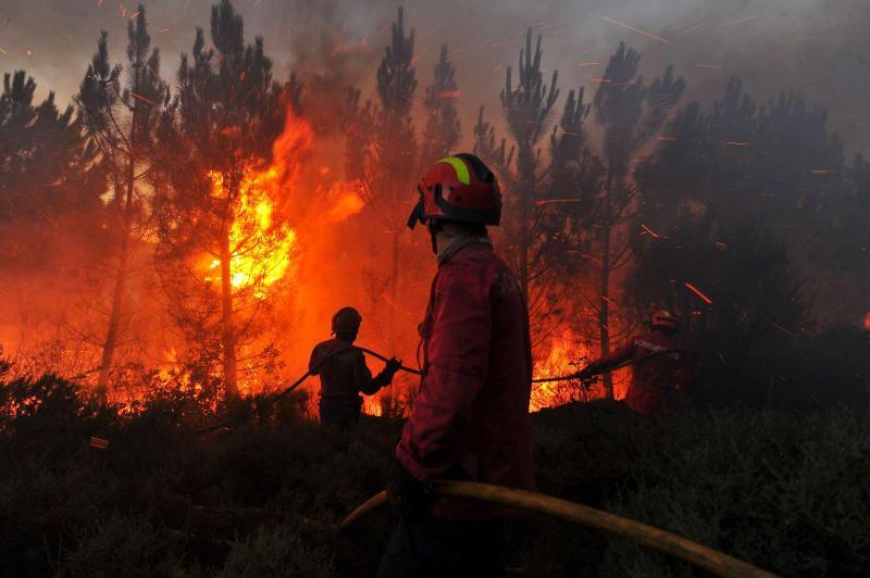 Bombeiros combatem fogo no Caramulo (LUSA)