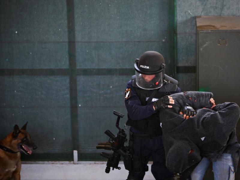 Exercicios Unidade Especial de Polícia