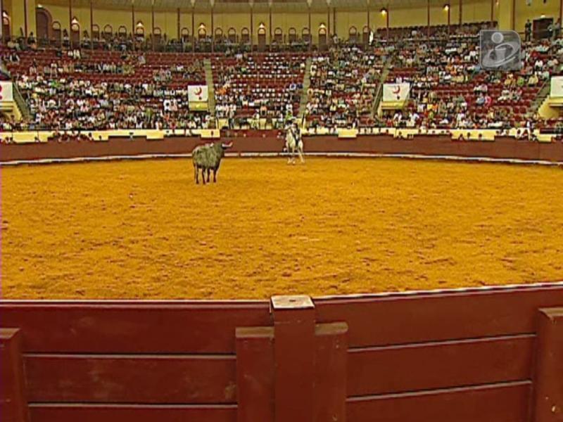 Tribunal autoriza tourada em Viana