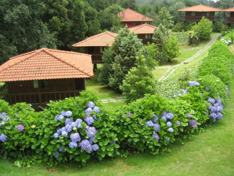 Bungalows estão rodeados por um parque de árvores (site oficial do hotel)