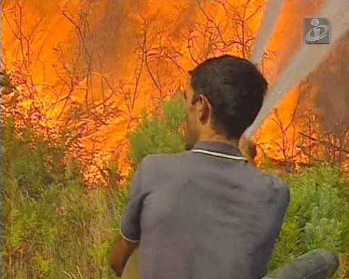Incêndios: distrito de Viseu tem sido o mais atingido