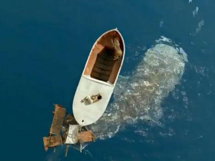 Novo trailer de life of pi aumenta expectativa para o for Life of pi piscine molitor