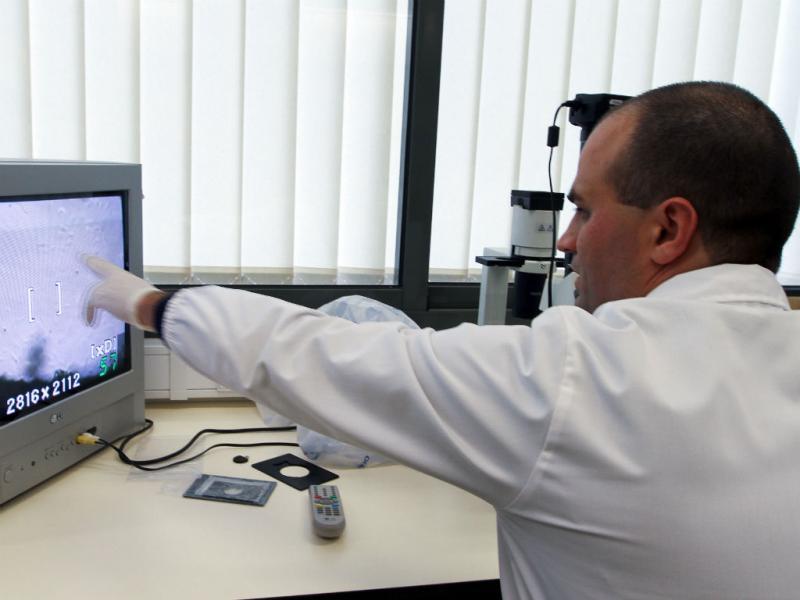 Universidade da Covilhã desenvolve novo tipo de implantes para regenerar ossos (António José/Lusa)