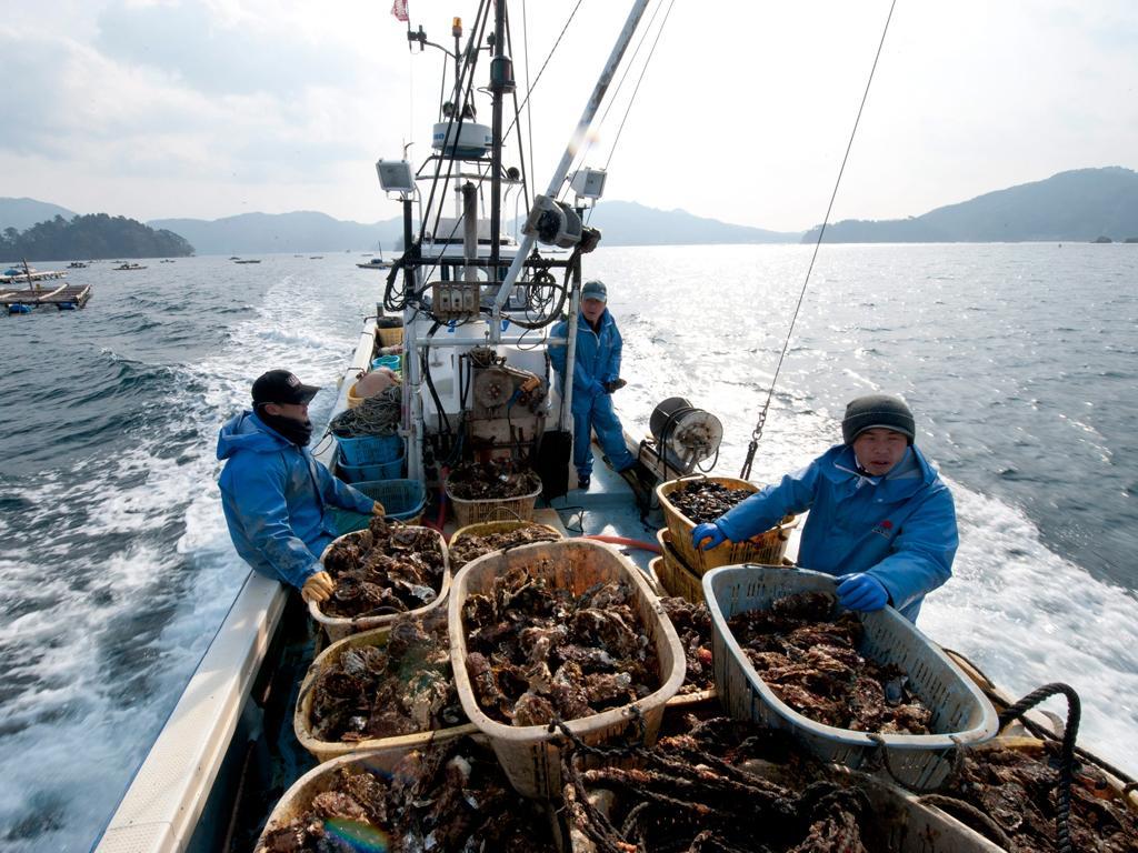 Pescas (Lusa/EPA)