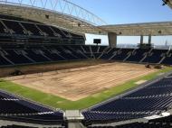 FC Porto mudou relvado do Dragão em junho