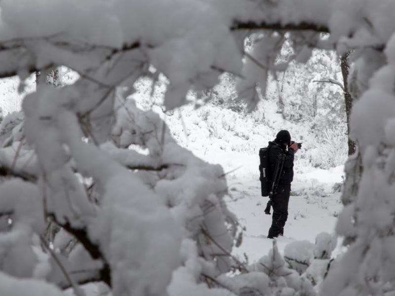 Neve em Bragança [LUSA]