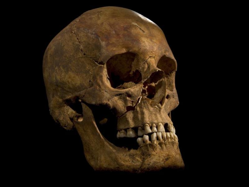 Descoberto o esqueleto do Rei Ricardo III de Inglaterra (EPA)