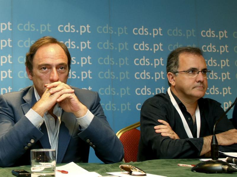 Paulo Portas e António Pires de Lima (Lusa/João Relvas)