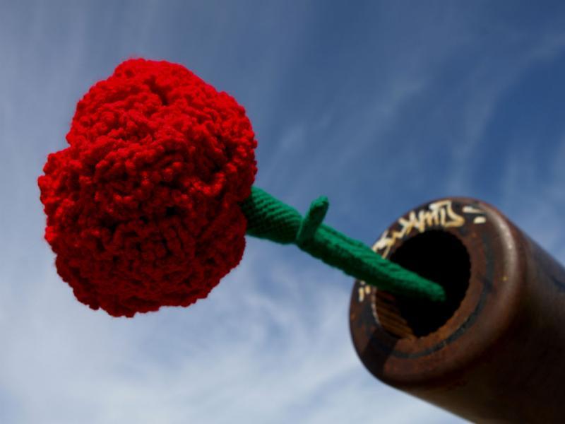 25 de Abril: ativismo com tricô (Lusa)