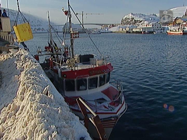 Pesca do bacalhau na Noruega