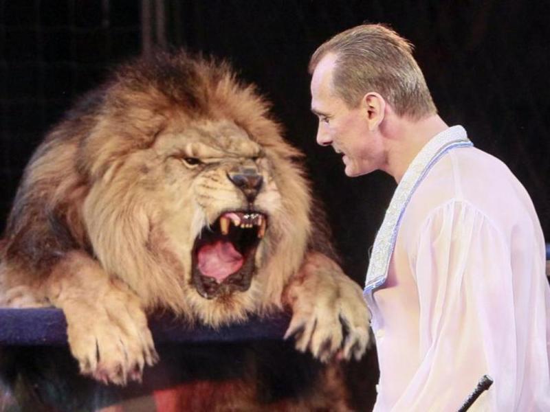 Artista de circo enfia cabeça na boca de leão (REUTERS/Gleb Garanich)