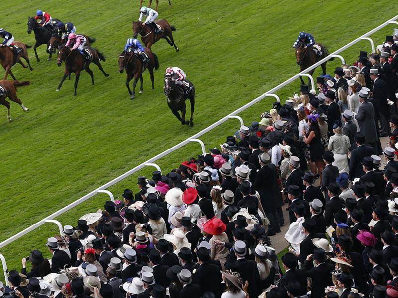 Mais chapéus que cavalos na loucura de Ascot (Reuters)