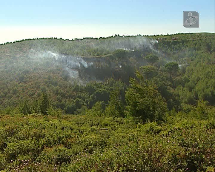 Incêndio no Parque Natural de Sintra-Cascais