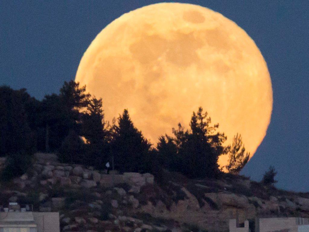 Esta Noite Olhe Para O Ceu Ha Uma Super Lua Tvi24